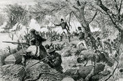 Fight in Massachusetts