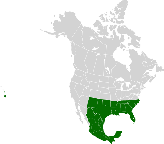 File:AMP Location of the Confederate States of America.png