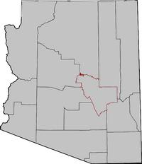 Arizona Senatorial Election Results by County, 2010