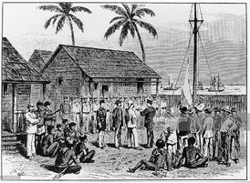 Порт-Папуа