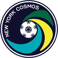 File:Cosmos2010.png