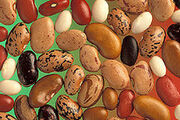 Various Pulses (beans)