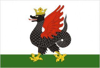 Flag kazan enl 0