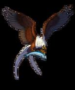 Snoweaglefisheaglewild