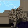 Lightning-Struck Tree