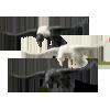 Flyingharvestcrowpack
