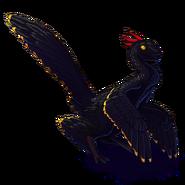 Pterixblackandgold