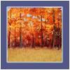 Autumnfieldbackdroppack