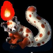 Firefoxxspotted