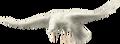 Flyingharvestcrowwhitefull
