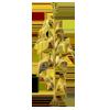 Goldencornplant3