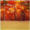 Autumnfieldbackdrop