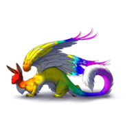 Dragomorphrainbow