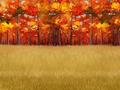 Autumnfieldbackdropfull