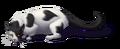 Barncatblackandwhitefull