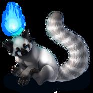 Firefoxxgray
