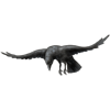 Flyingharvestcrowblack