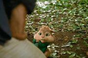 Scared Theodore