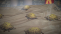 Suck Toads in terrarium.png