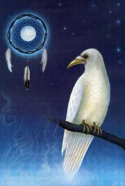 White raven dreamcatcher