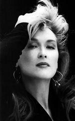 2008 0415 program Meryl Streep