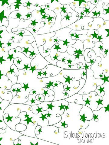 File:Stillous vibrantous (star vine).jpg