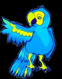 15-PlumebirdS