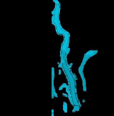 Rio Amazin