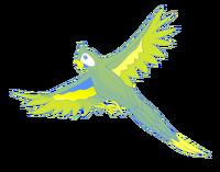 16-PurflyS