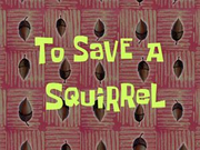 To Save a Squirrel