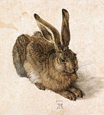 150px-Durer Young Hare
