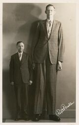 List of tallest people