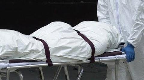 RIP verne troyer ( 2018 DEAD
