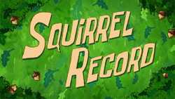Squirrel Record