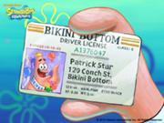 180px-License