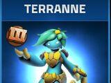 Terranne