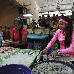 Natalie &amp; Nadiya doing the <i>Fish-by-the-Barrel</i> <a href=