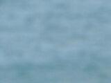 Freddy & Kendra