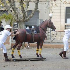 Kelsey & Joey doing the <i>Horse</i> Detour in Leg 3.