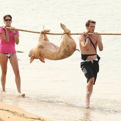 Margie &amp; Luke carrying a pig in the <a href=