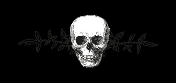 File:Skull1289454537.png