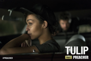 Tulip - First look