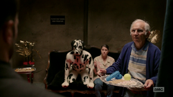 Jesse, Cassidy, and Tulip presented with options for a sex act with a man in a dalmatian costume
