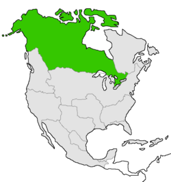Mapa de Canadá en Norteamérica