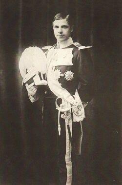 Luis Fernando de Orleans-Borbón