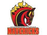 Shreveport/Bossier Mavericks