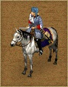 France mounted officer 17th
