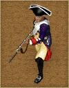 Netherlands fusilier