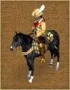 Netherlands dragoon 17th