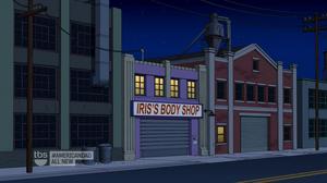 Irisbody